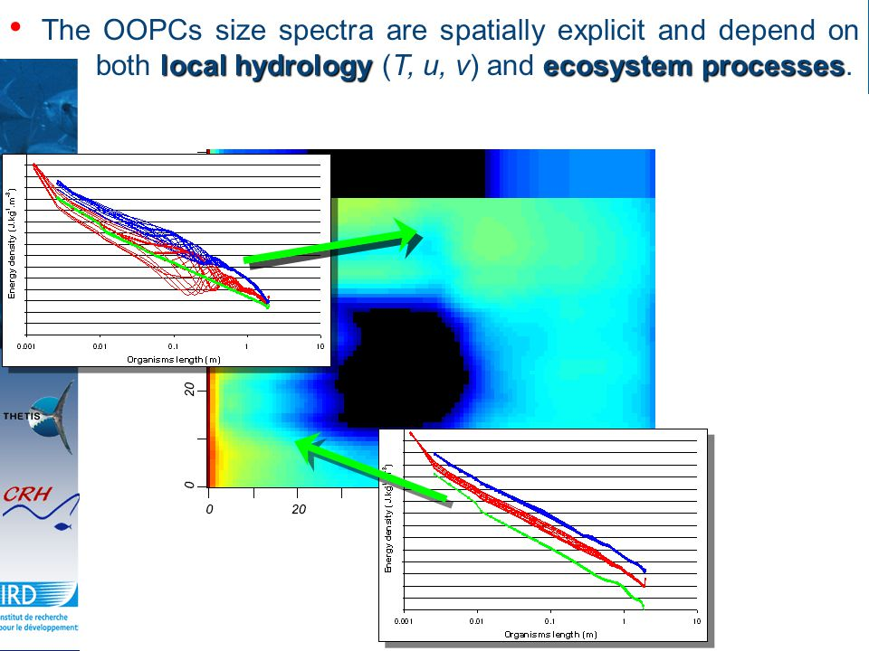 local hydrologyecosystem processes The OOPCs size spectra are spatially explicit and depend on both local hydrology (T, u, v) and ecosystem processes.