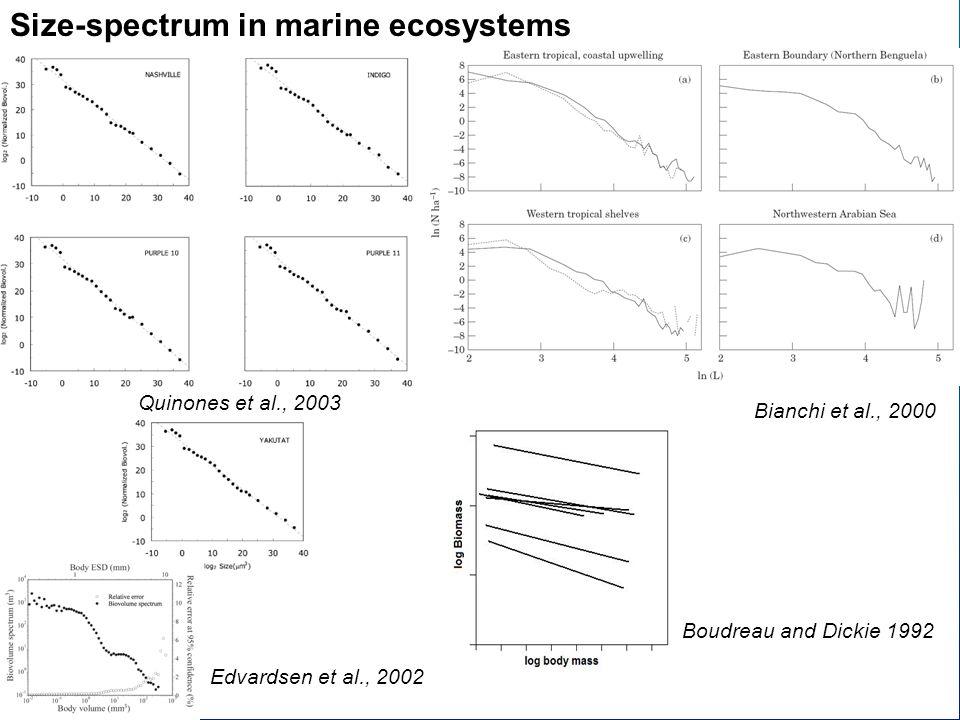Quinones et al., 2003 Size-spectrum in marine ecosystems Edvardsen et al., 2002 Bianchi et al., 2000 Boudreau and Dickie 1992