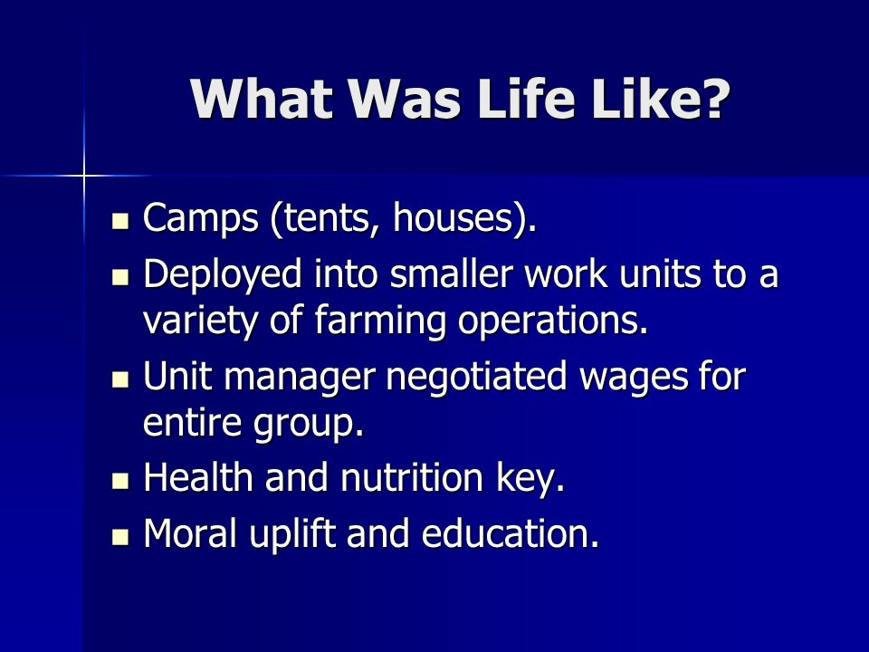 What Was Life Like. Camps (tents, houses). Camps (tents, houses).