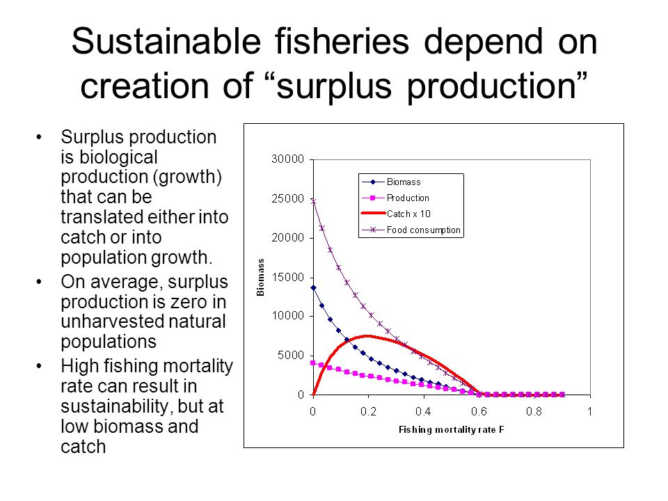 "Sustainable fisheries depend on creation of ""surplus production"" Surplus production is biological production (growth) that can be translated either in"