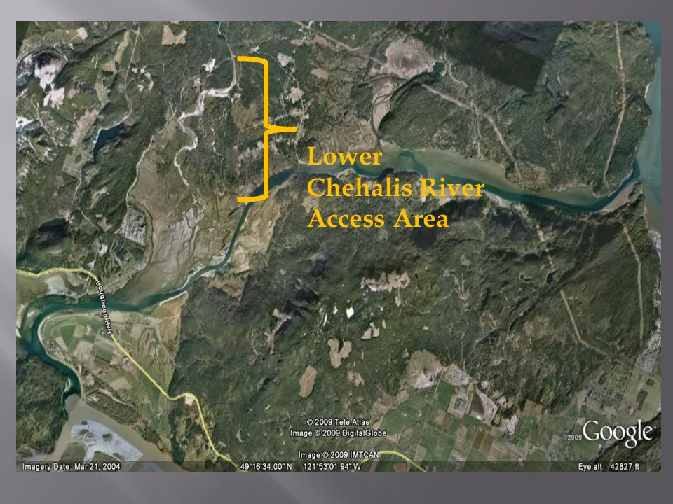 Lower Chehalis River Access Area