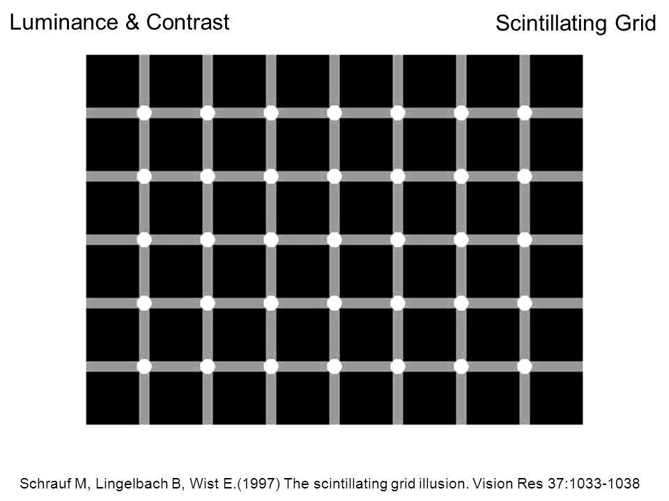Scintillating Grid Schrauf M, Lingelbach B, Wist E.(1997) The scintillating grid illusion.