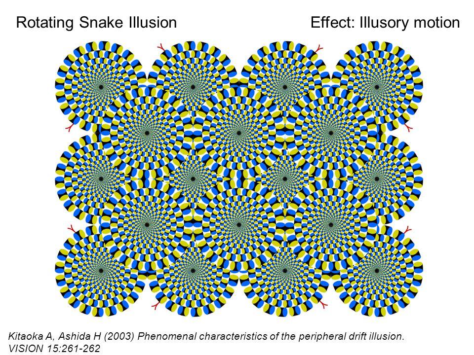 Rotating Snake Illusion Kitaoka A, Ashida H (2003) Phenomenal characteristics of the peripheral drift illusion.