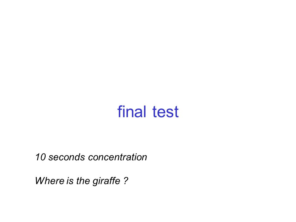 final test 10 seconds concentration Where is the giraffe