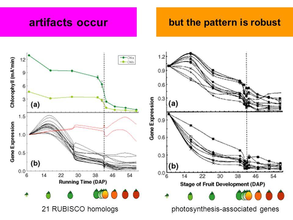 data visualization interpretation is problematic