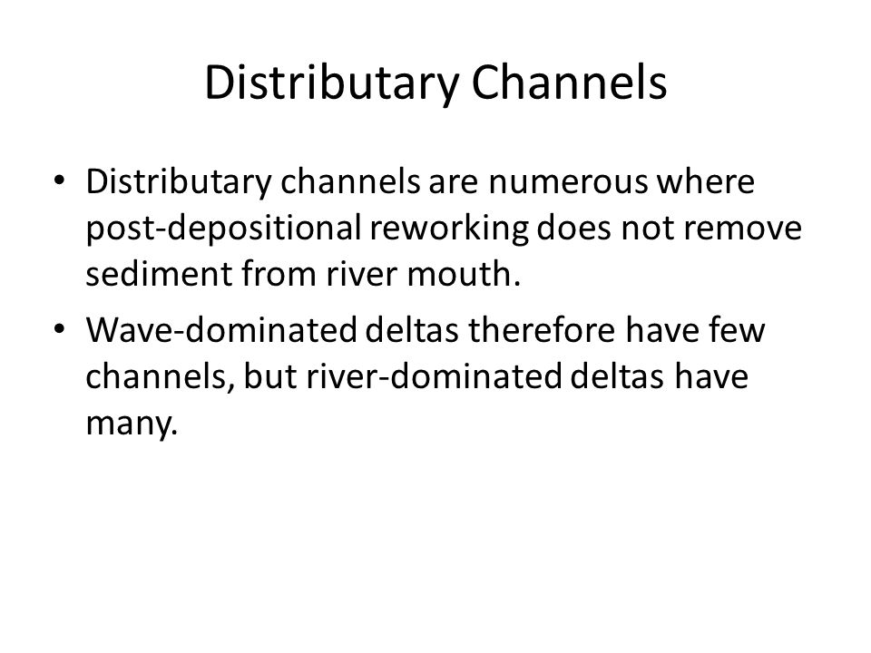 Distributary Channels Distributary channels are numerous where post-depositional reworking does not remove sediment from river mouth.