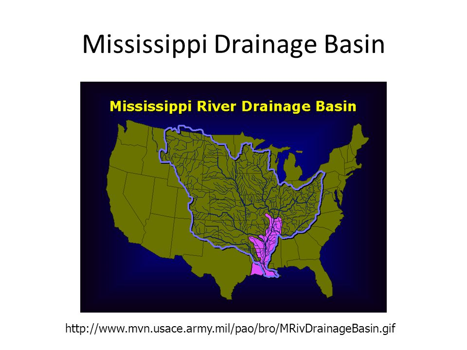 Mississippi Drainage Basin http://www.mvn.usace.army.mil/pao/bro/MRivDrainageBasin.gif