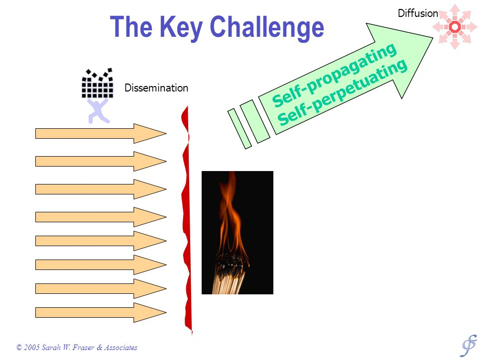 The Key Challenge Self-propagating Self-perpetuating Dissemination Diffusion © 2005 Sarah W. Fraser & Associates