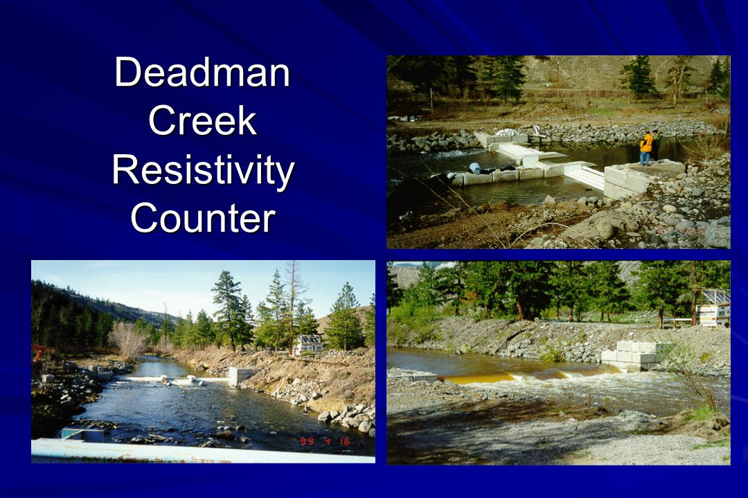 Deadman Creek Resistivity Counter