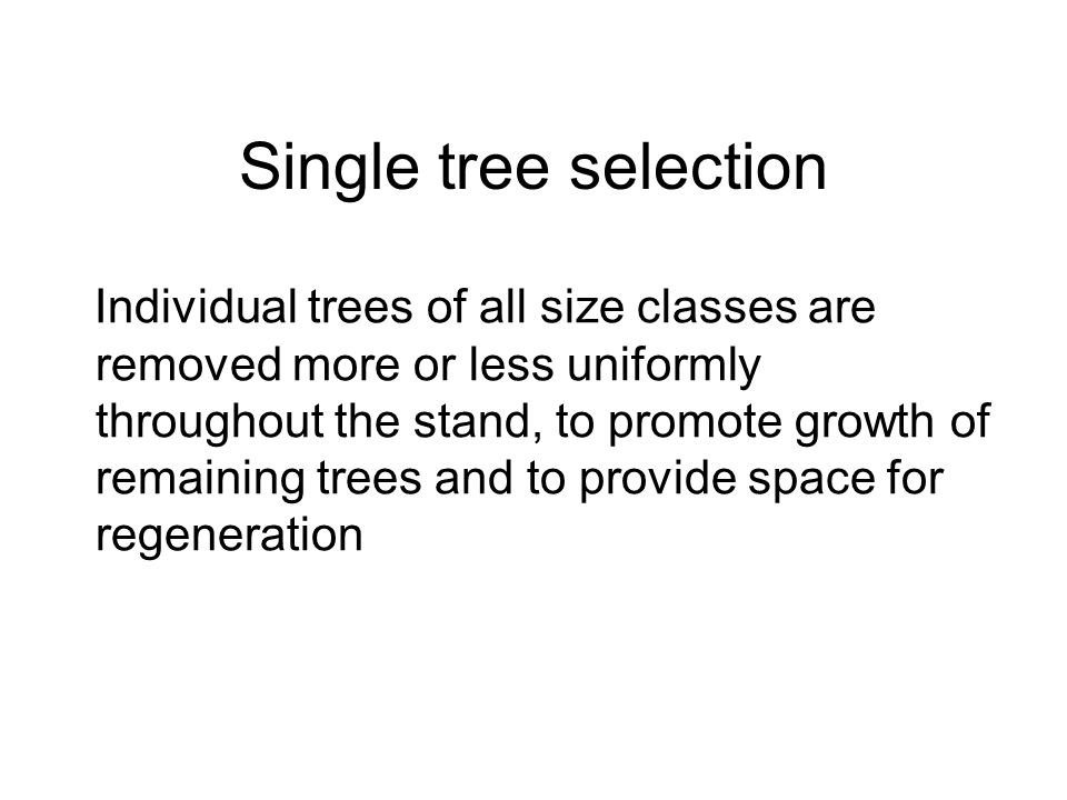Single tree selection Individual trees of all size classes are removed more or less uniformly throughout the stand, to promote growth of remaining trees and to provide space for regeneration