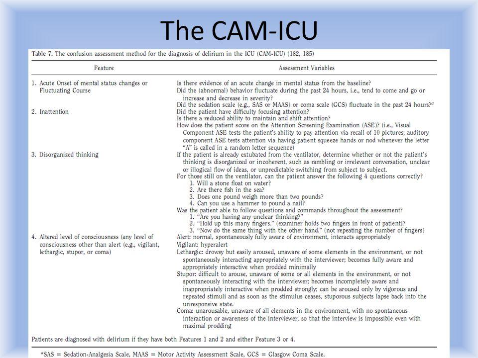 The CAM-ICU