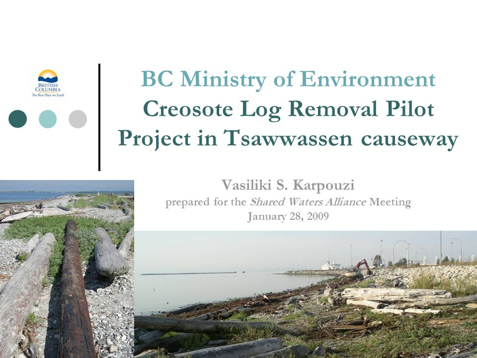 BC Ministry of Environment Creosote Log Removal Pilot Project in Tsawwassen causeway Vasiliki S.