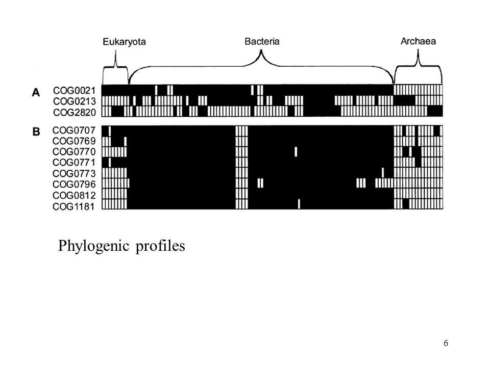 6 Phylogenic profiles