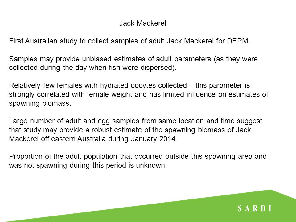 Jack Mackerel First Australian study to collect samples of adult Jack Mackerel for DEPM.