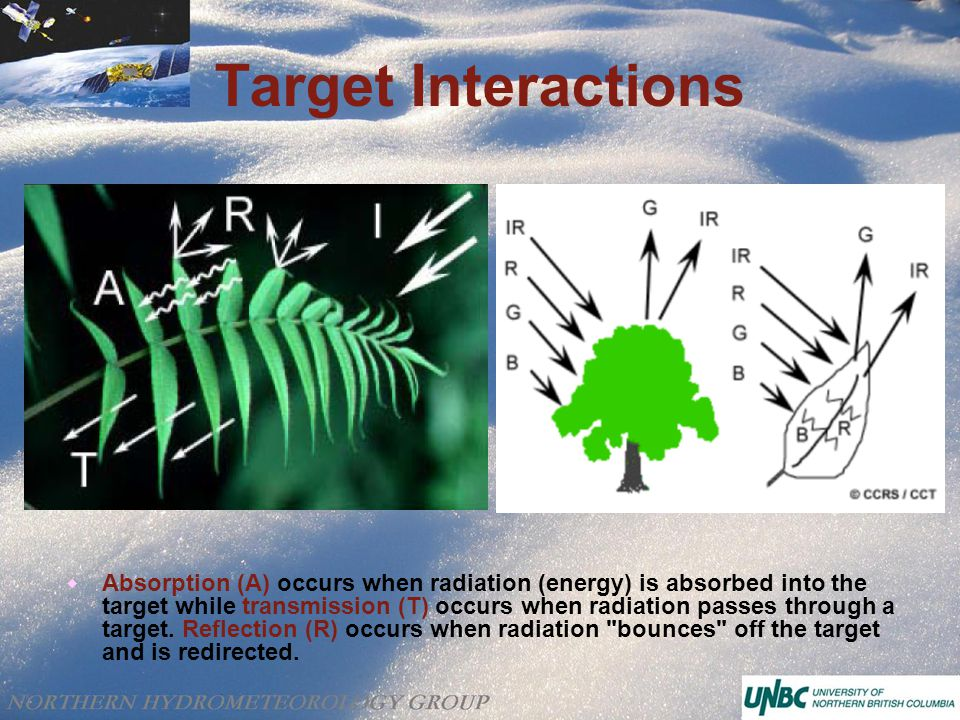 Target Interactions  Absorption (A) occurs when radiation (energy) is absorbed into the target while transmission (T) occurs when radiation passes through a target.