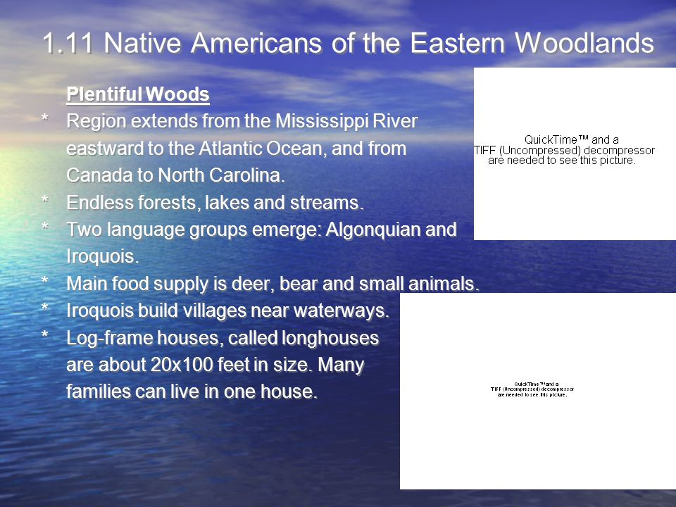 1.11 Native Americans of the Eastern Woodlands Plentiful Woods *Region extends from the Mississippi River eastward to the Atlantic Ocean, and from Can