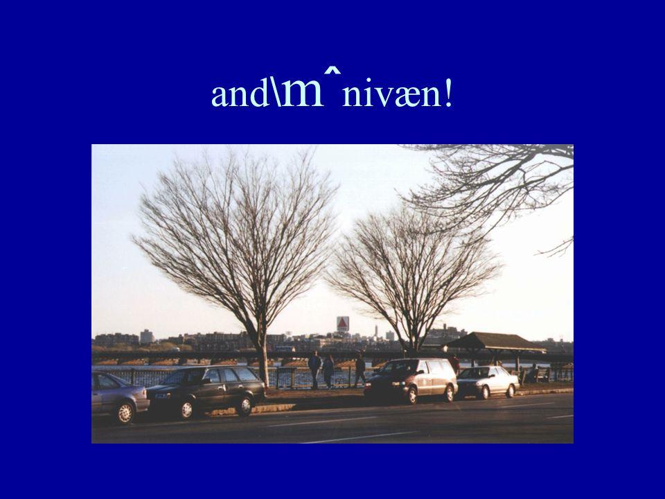 and \ m ˆ nivæn!