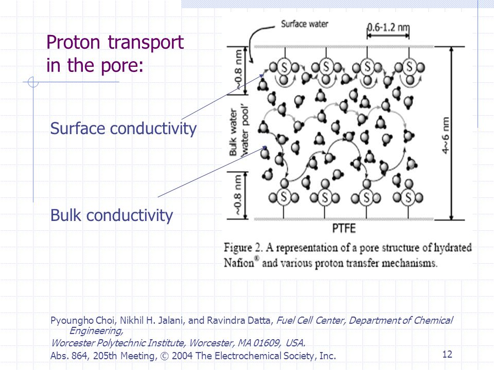 12 Proton transport in the pore: Surface conductivity Bulk conductivity Pyoungho Choi, Nikhil H.