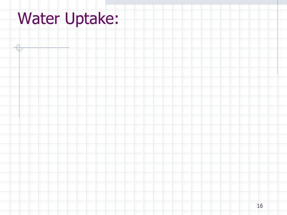 16 Water Uptake: