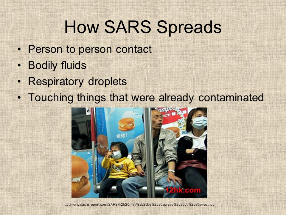 How SARS Spreads Person to person contact Bodily fluids Respiratory droplets Touching things that were already contaminated http://www.sachsreport.com