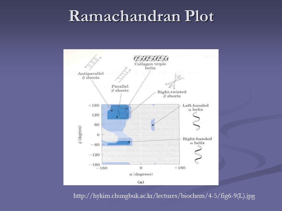 Ramachandran Plot http://hykim.chungbuk.ac.kr/lectures/biochem/4-5/fig6-9(L).jpg