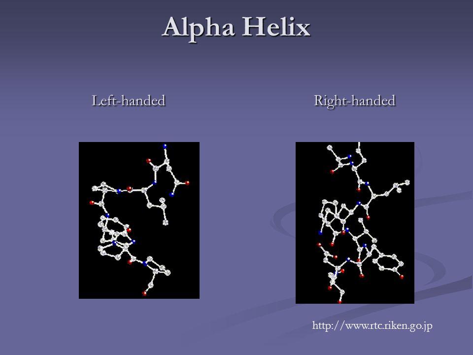 Alpha Helix Left-handed Right-handed http://www.rtc.riken.go.jp