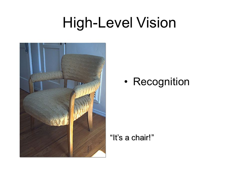 """High-Level Vision Recognition """"It's a chair!"""""""