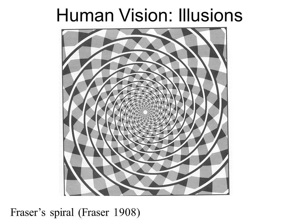 Human Vision: Illusions Fraser's spiral (Fraser 1908)