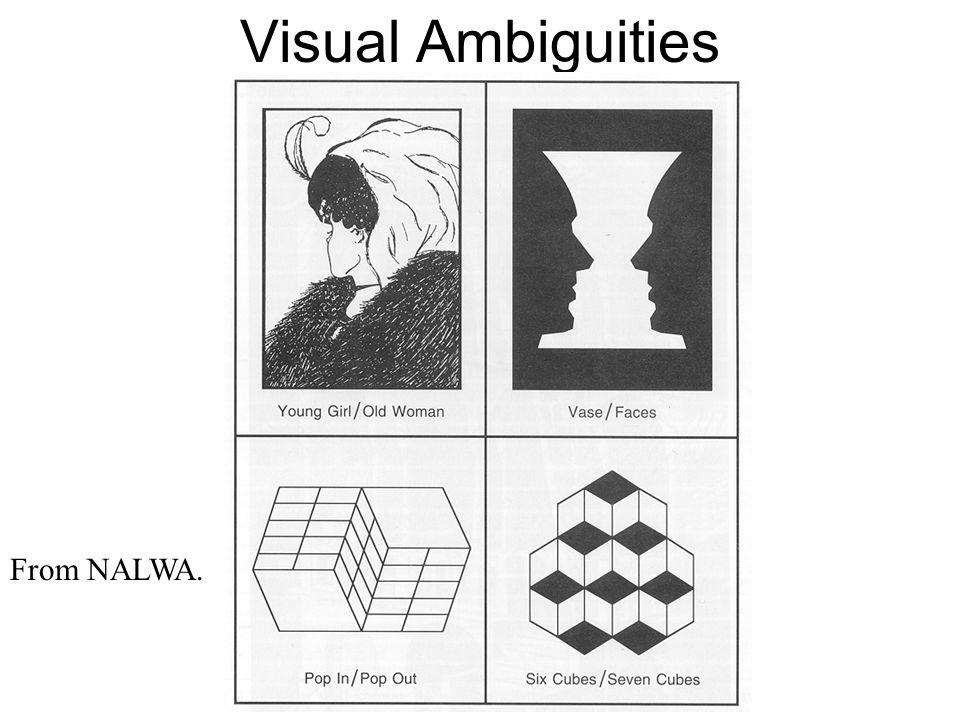Visual Ambiguities From NALWA.