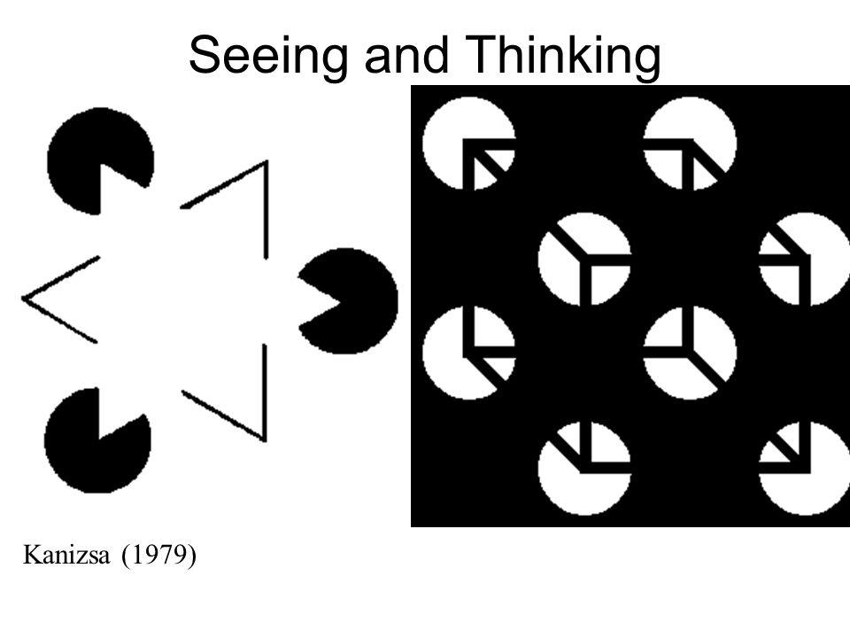 Seeing and Thinking Kanizsa (1979)