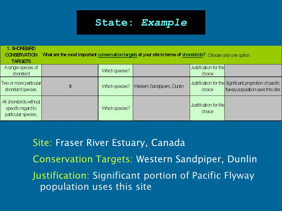 Site: Fraser River Estuary, Canada Conservation Targets: Western Sandpiper, Dunlin Justification: Significant portion of Pacific Flyway population use