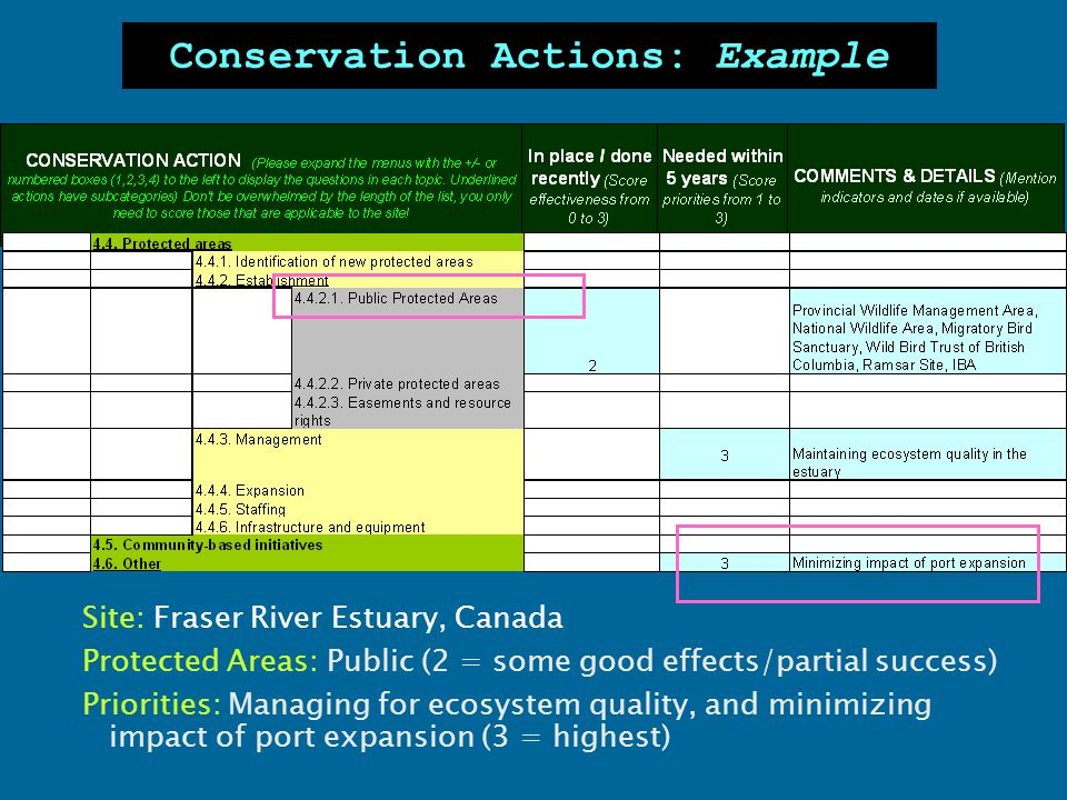 Conservation Actions: Example Site: Fraser River Estuary, Canada Protected Areas: Public (2 = some good effects/partial success) Priorities: Managing