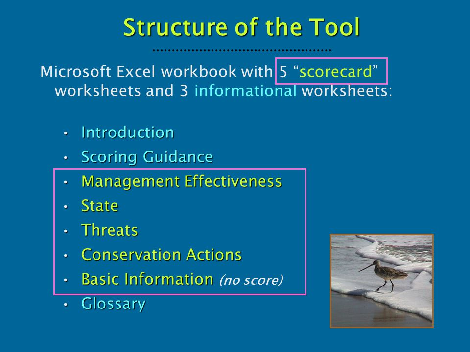 "Microsoft Excel workbook with 5 ""scorecard"" worksheets and 3 informational worksheets: IntroductionIntroduction Scoring GuidanceScoring Guidance Manag"