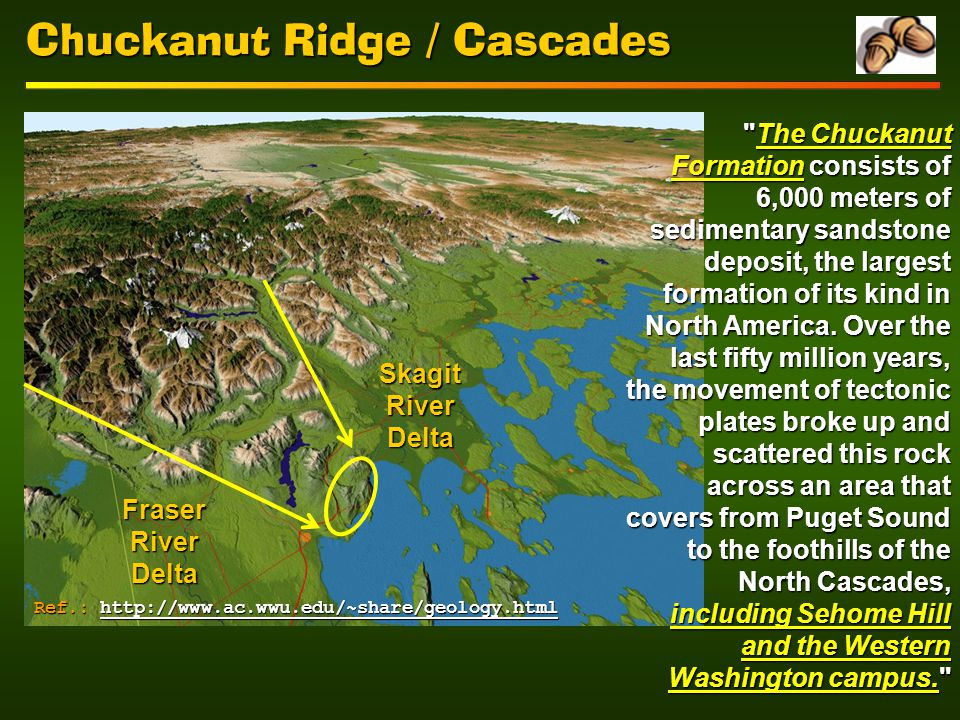 Chuckanut Ridge / Cascades Fraser River Delta Skagit River Delta The Chuckanut Formation consists of 6,000 meters of sedimentary sandstone deposit, the largest formation of its kind in North America.