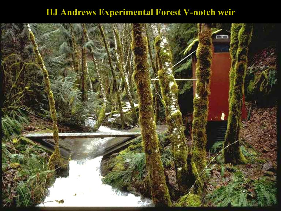 HJ Andrews Experimental Forest V-notch weir