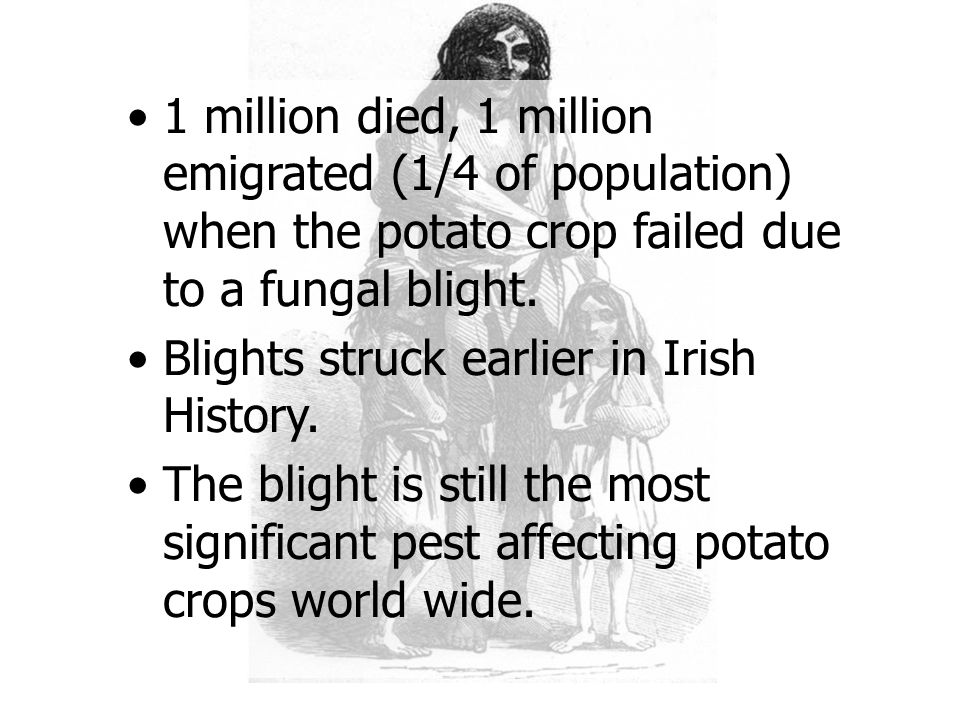 1 million died, 1 million emigrated (1/4 of population) when the potato crop failed due to a fungal blight.