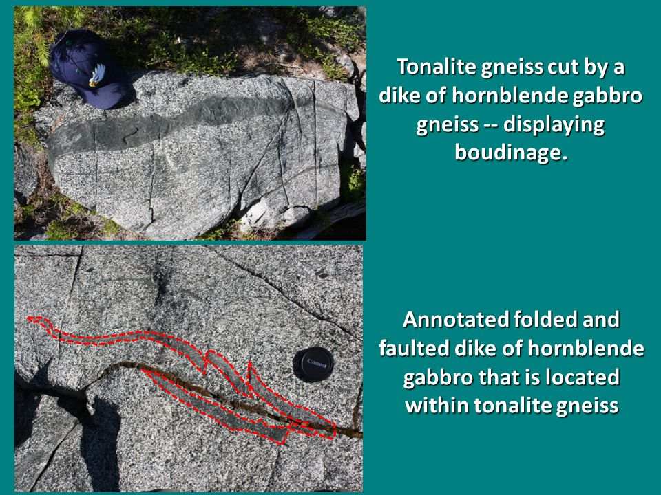 Tonalite gneiss cut by a dike of hornblende gabbro gneiss -- displaying boudinage.
