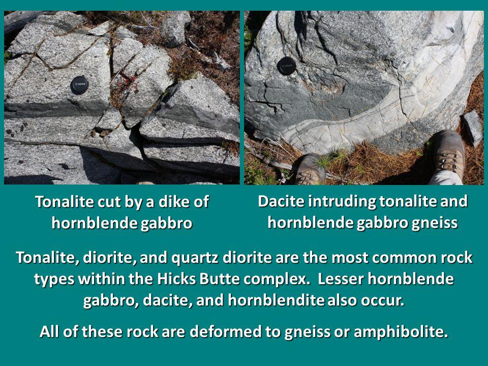 Tonalite, diorite, and quartz diorite are the most common rock types within the Hicks Butte complex. Lesser hornblende gabbro, dacite, and hornblendit