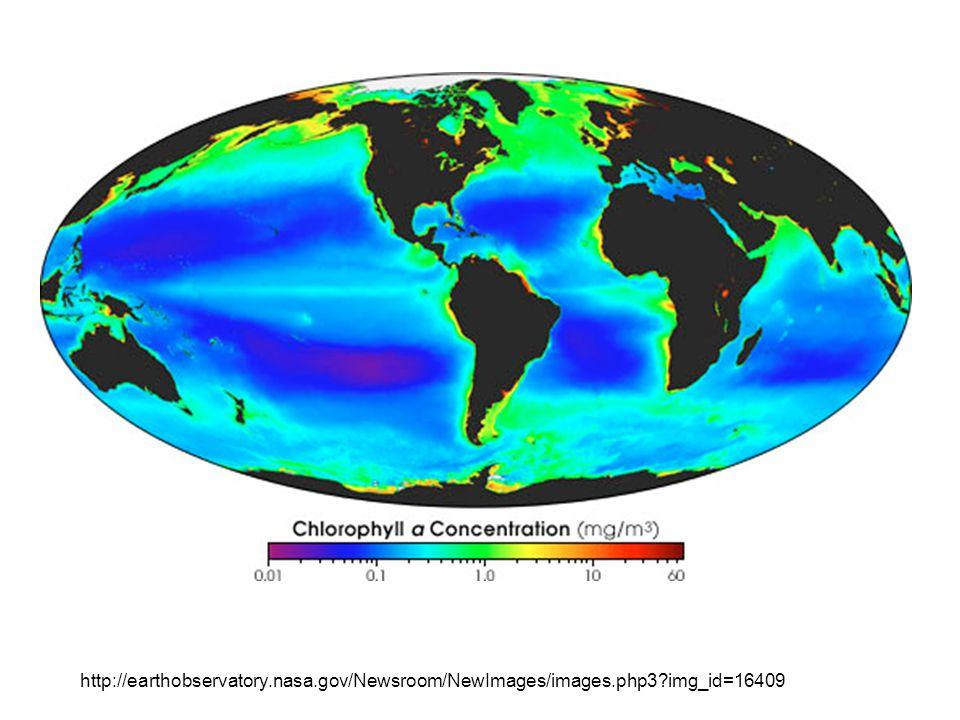 http://earthobservatory.nasa.gov/Newsroom/NewImages/images.php3?img_id=16409