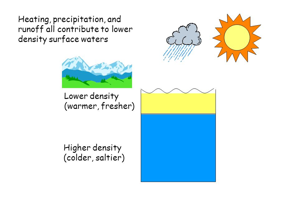 Lower density (warmer, fresher) Heating, precipitation, and runoff all contribute to lower density surface waters Higher density (colder, saltier)