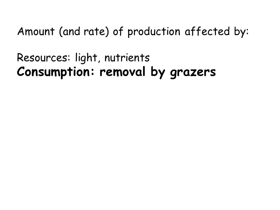 Amount (and rate) of production affected by: Resources: light, nutrients Consumption: removal by grazers