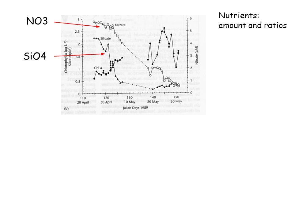 SiO4 NO3 Nutrients: amount and ratios