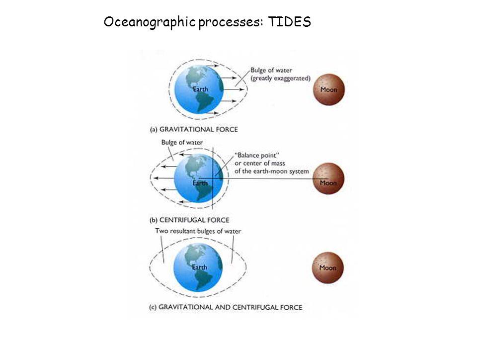 Oceanographic processes: TIDES