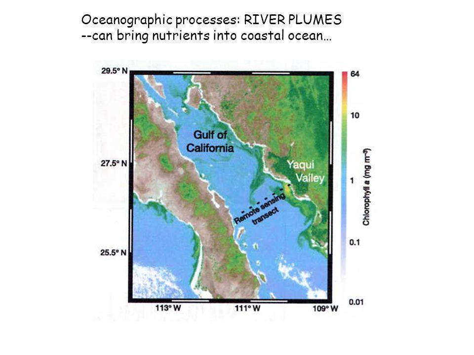 Oceanographic processes: RIVER PLUMES --can bring nutrients into coastal ocean…