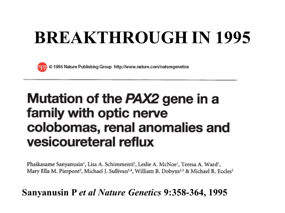 BREAKTHROUGH IN 1995 Sanyanusin P et al Nature Genetics 9:358-364, 1995