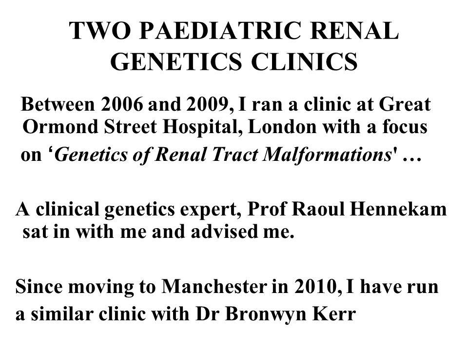 THREE GENERATIONS AFFECTED BY KIDNEY HYPOPLASIA AND DYSPLASIA Kerecuk L et al Nephrol Dial Transplant 22:259-263, 2007