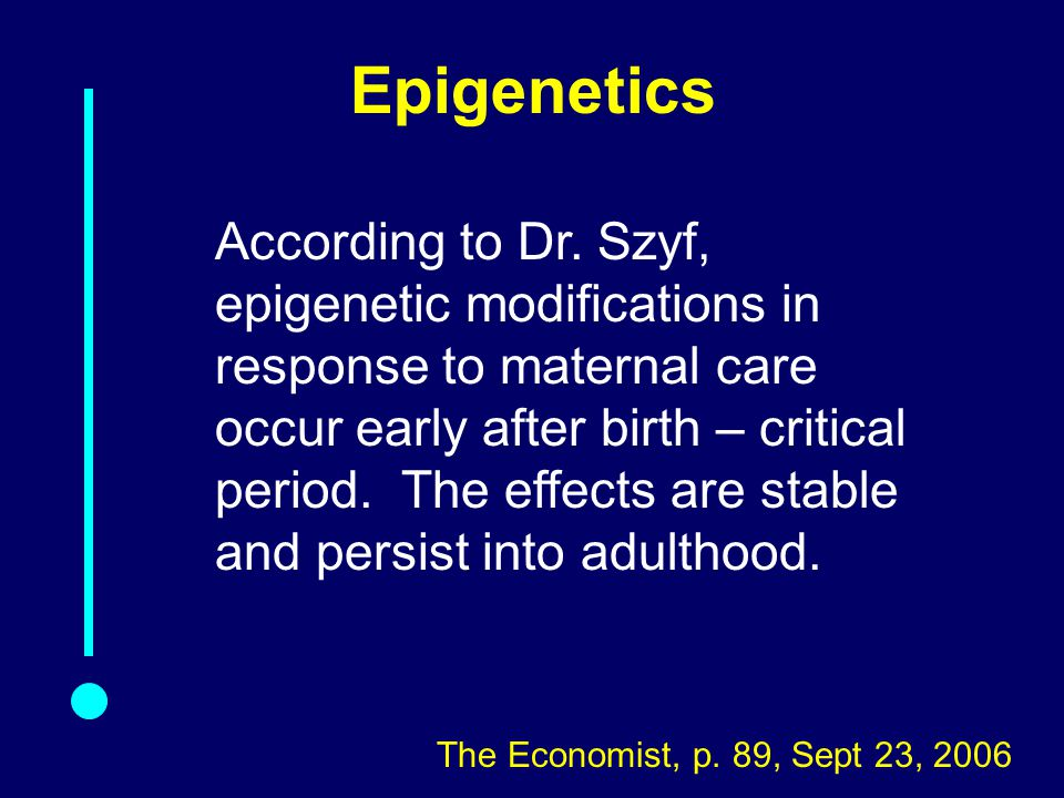 Epigenetics According to Dr.
