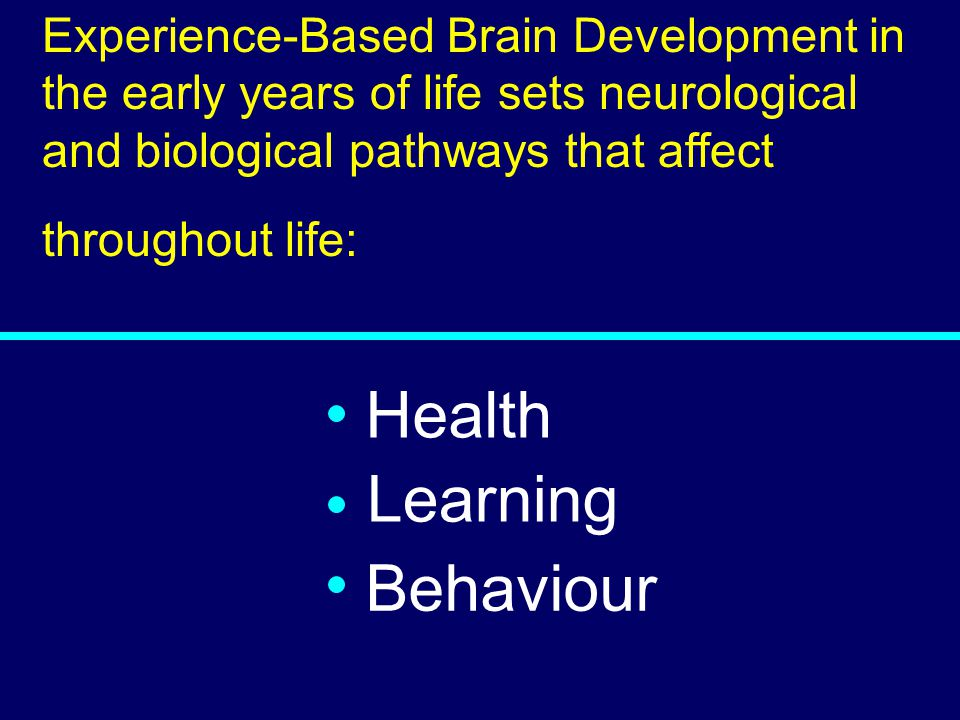 03-080 Health Learning Behaviour Experience-Based Brain Development in the early years of life sets neurological and biological pathways that affect t