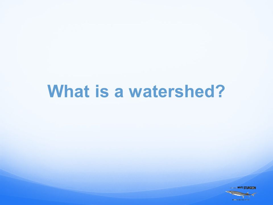 A watershed is the area of land where all of the water that is under it or drains off of it goes into the same place – either a lake, marsh, stream, river or groundwater.