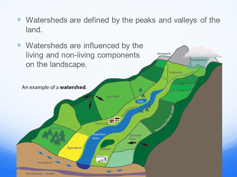 Stop Here.Why are we learning about watersheds.